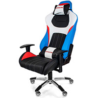 AK Racing  K9091 Premium Style Gaming Chair - Click below for large images